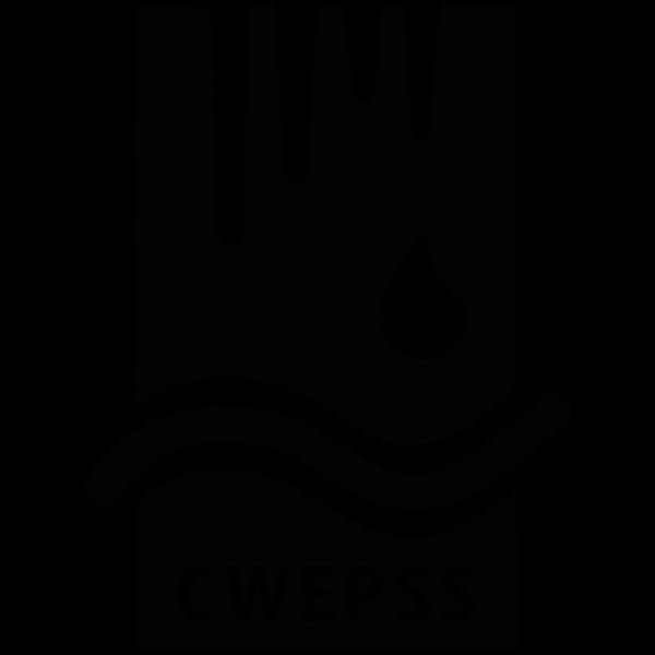 CWEPSS